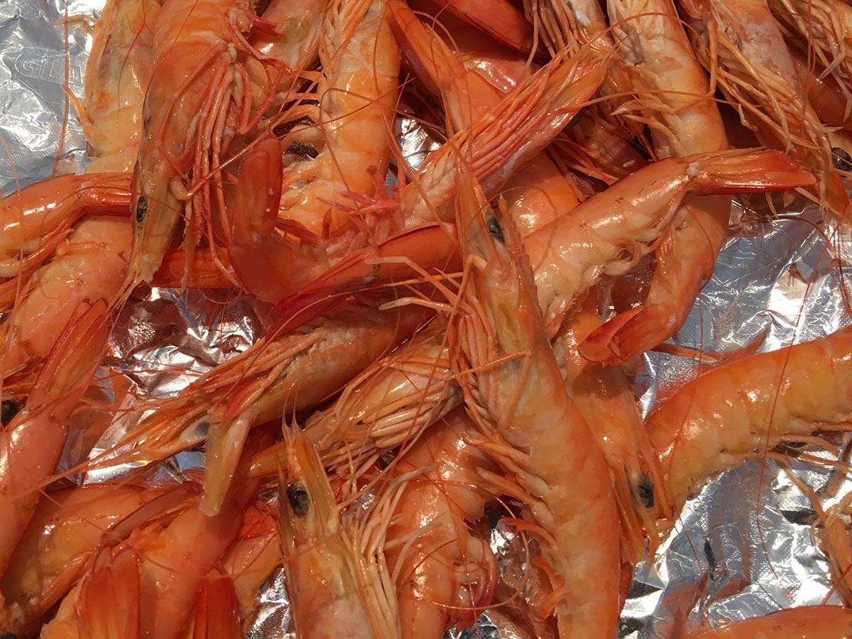 crevettes sauvages