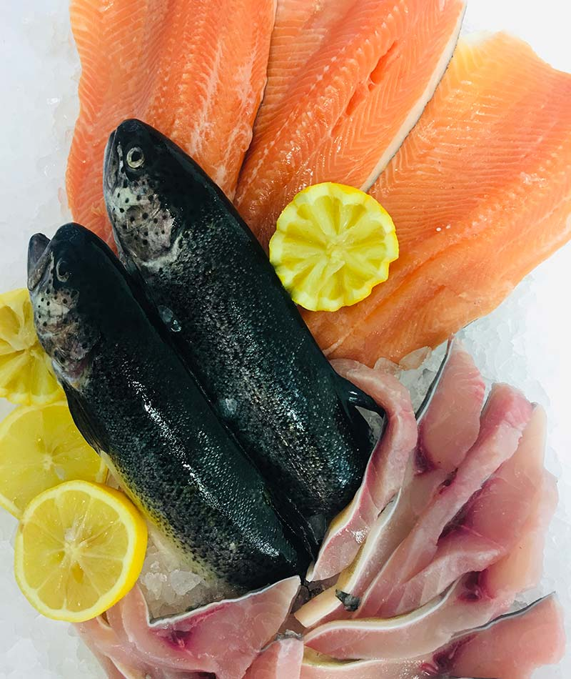 poissonnerie et poissons d'eau douce